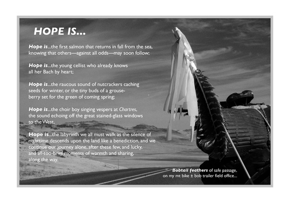 POSTER: Hope Is...